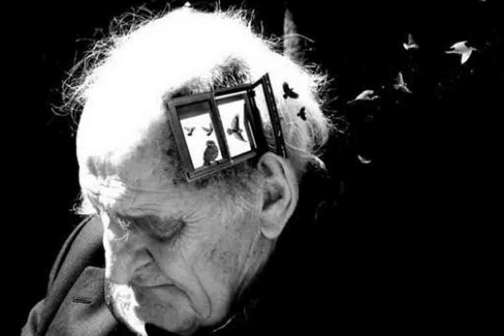 Alzheimer-Parkinson.jpg